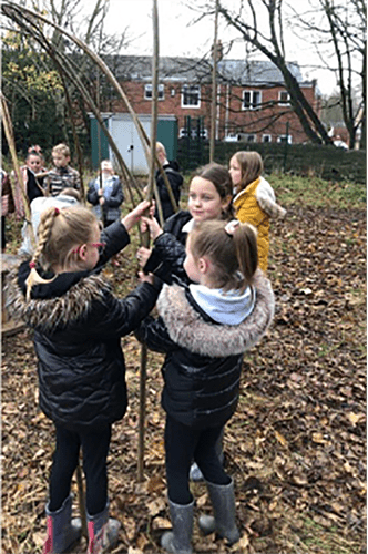 Working together to build living willow structures